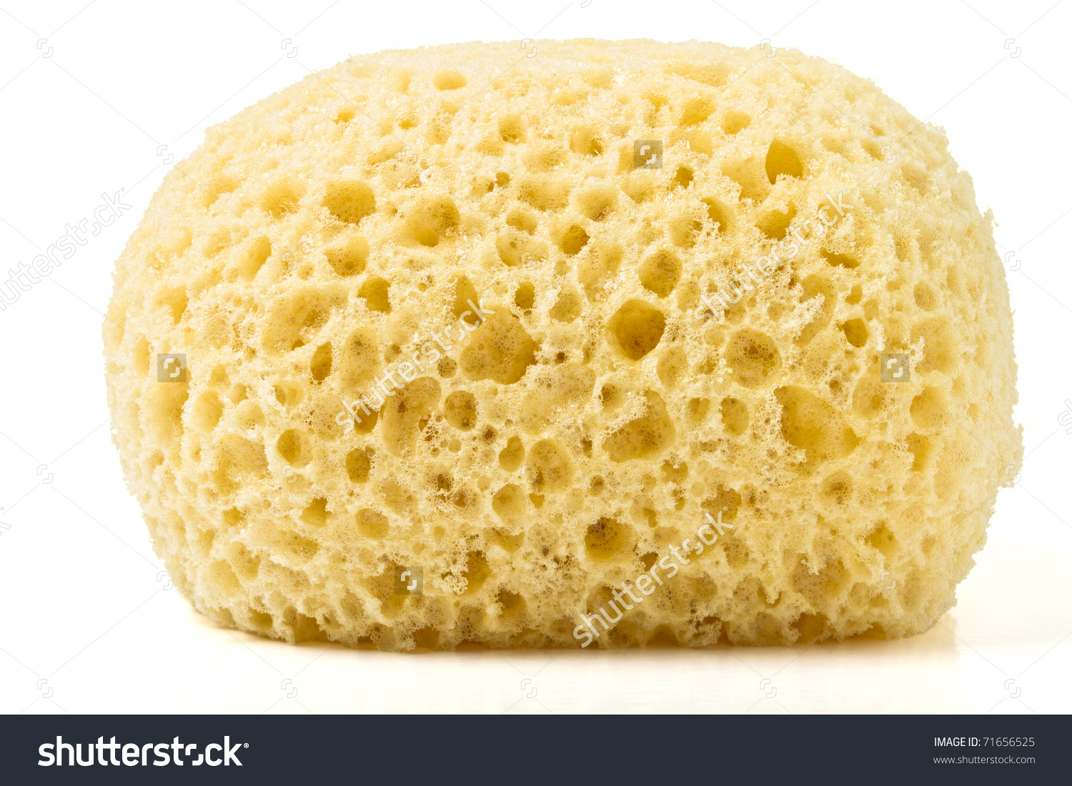 Synthetic Bath Sponge Low Perspective Isolated Stock Photo.