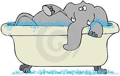 Elephant Bath Stock Illustrations.