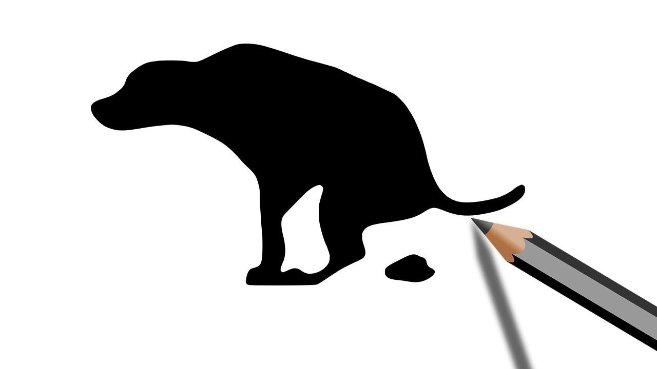 Dog Crapping Silhouette Drawing in 2019.
