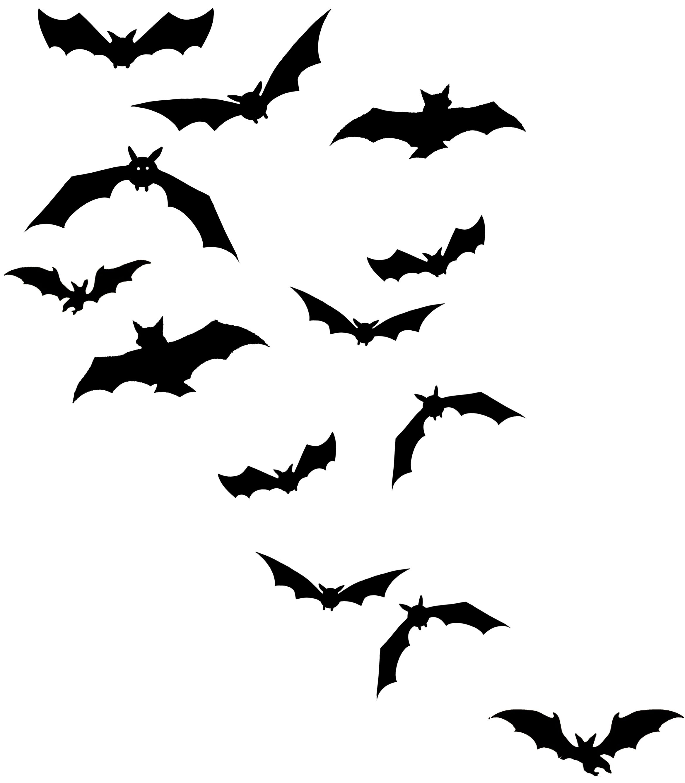Bats Clipart.