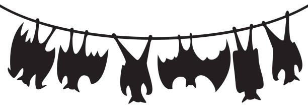 Upside Down Bat Clipart.