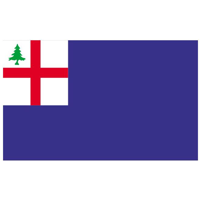 Bunker Hill vector flag.