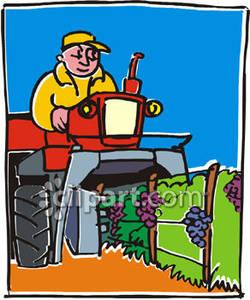 Working In a Vineyard.