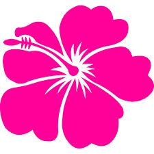1000+ images about Hawaii Flowers on Pinterest.