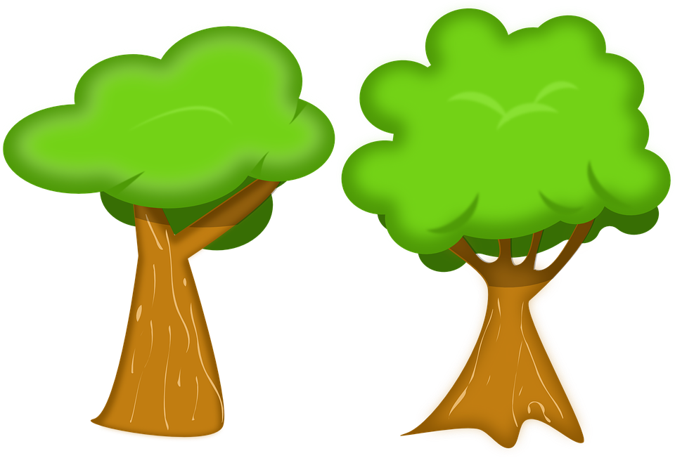 Free photo Tribe Tree Fungus Baumschwamm Forest Mushrooms Tree.