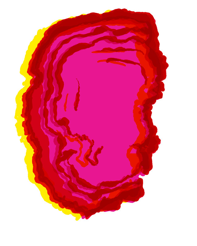 Rotrandiger Baumschwamm.