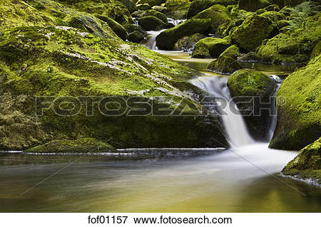 Picture of Germany, Bavarian Forest, River Buchberger Leite.