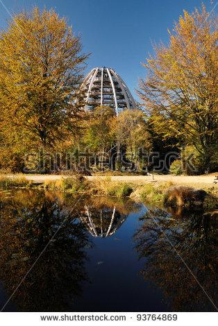 Bavarian Forest National Park Stock Photos, Royalty.
