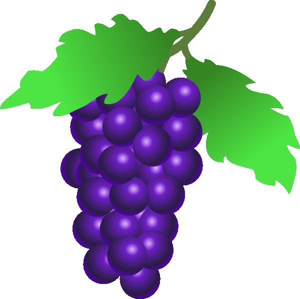 Bay grape clipart #7