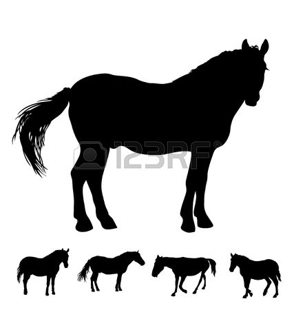 259 Bay Horse Stock Vector Illustration And Royalty Free Bay Horse.