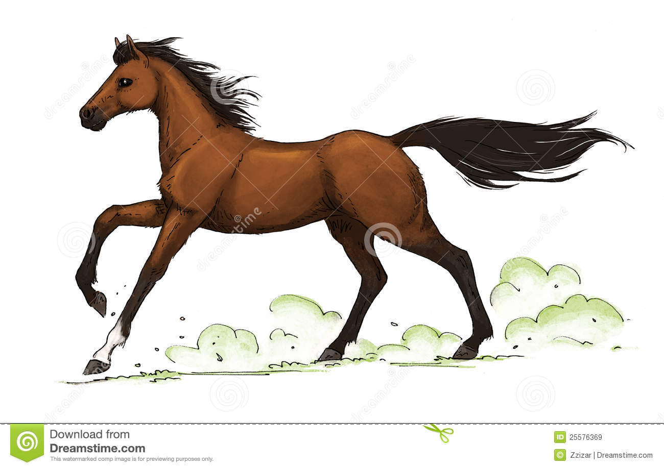 Bay Horse Gallop Royalty Free Stock Images.