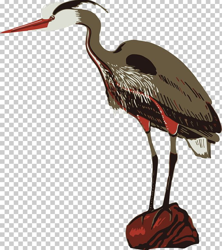 Crane Poster Zoo Heron PNG, Clipart, Beak, Bird, Bird.