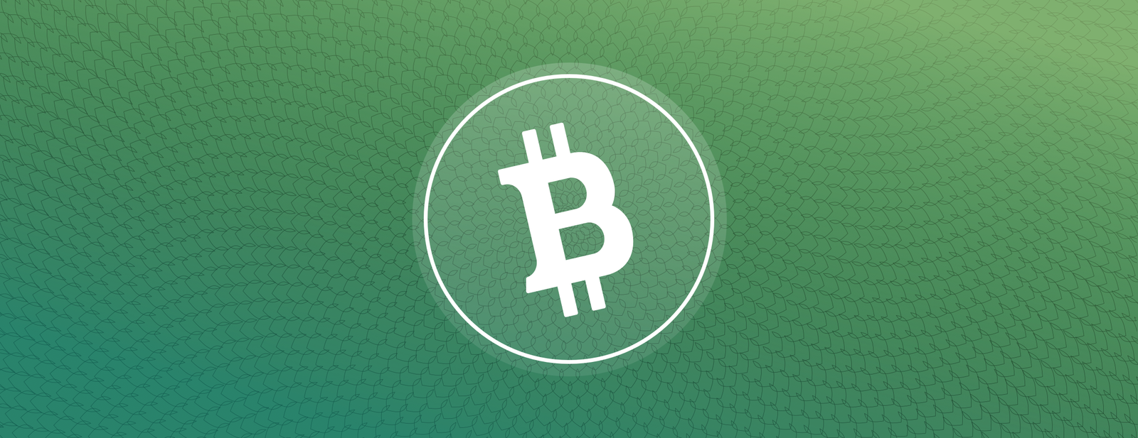 Buy, sell, send and receive Bitcoin Cash on Coinbase.