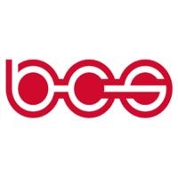 BCS Automotive Interface Solutions.