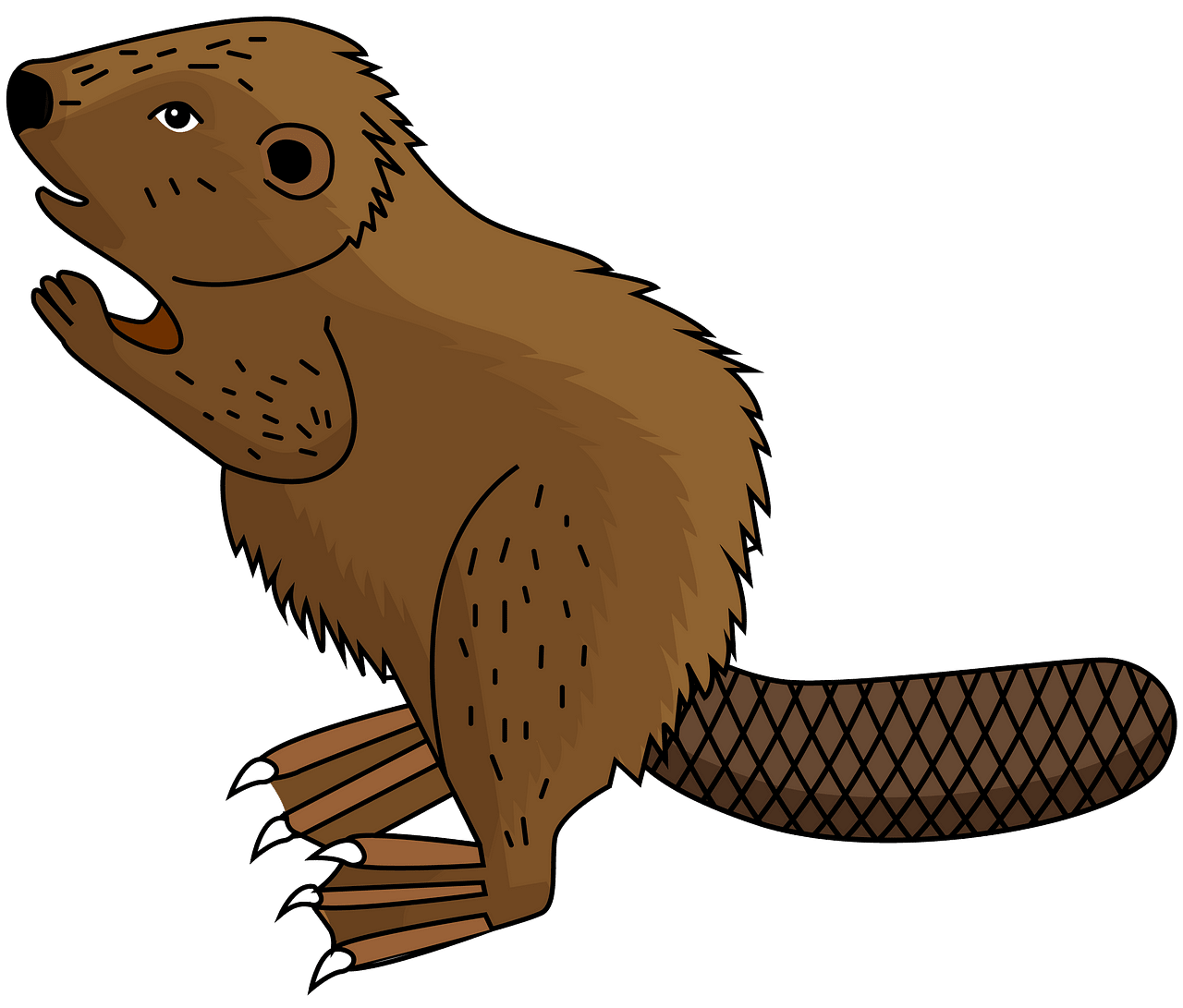 Beaver clipart. Free download..