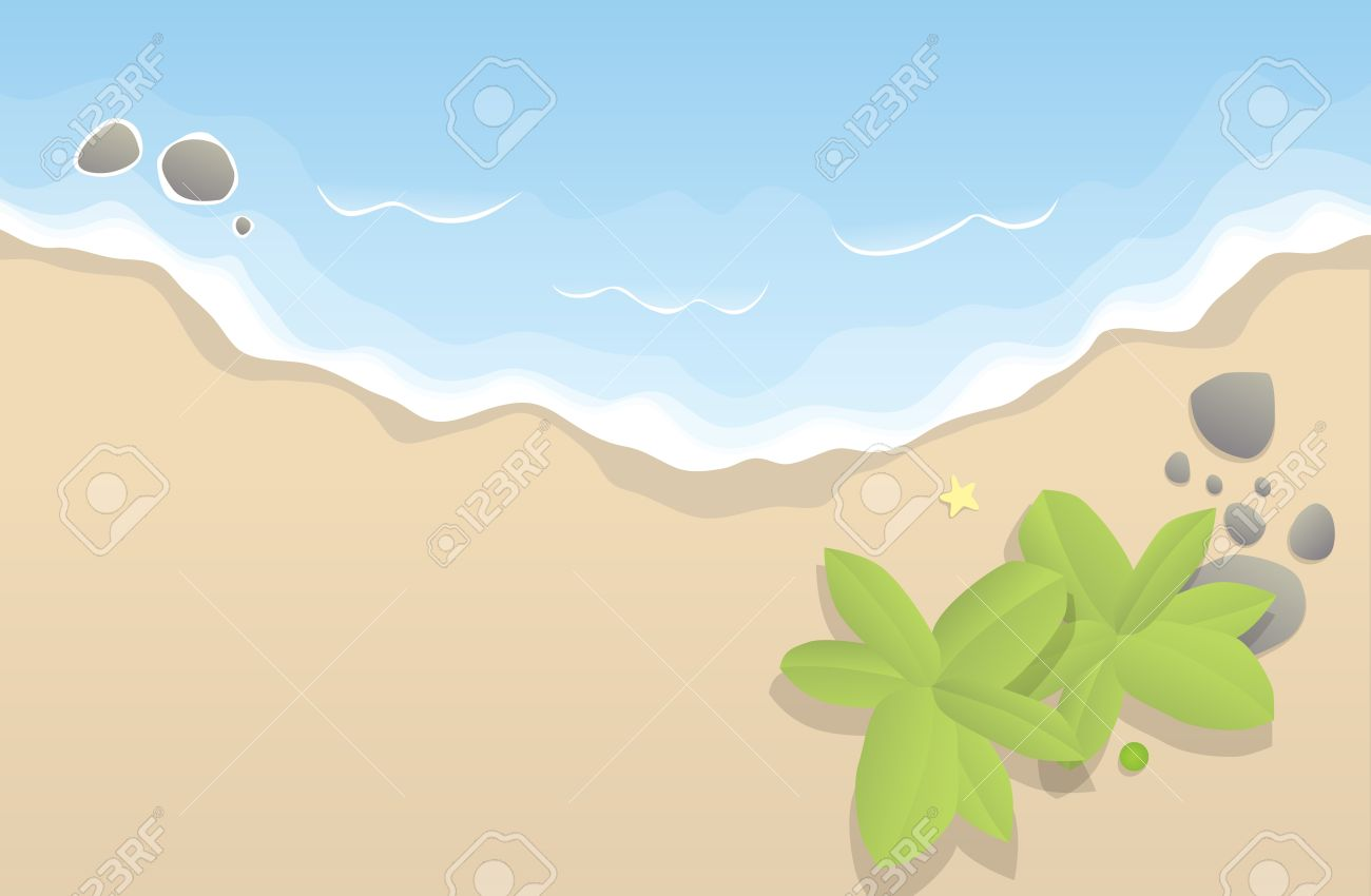 Beach bird clipart #14