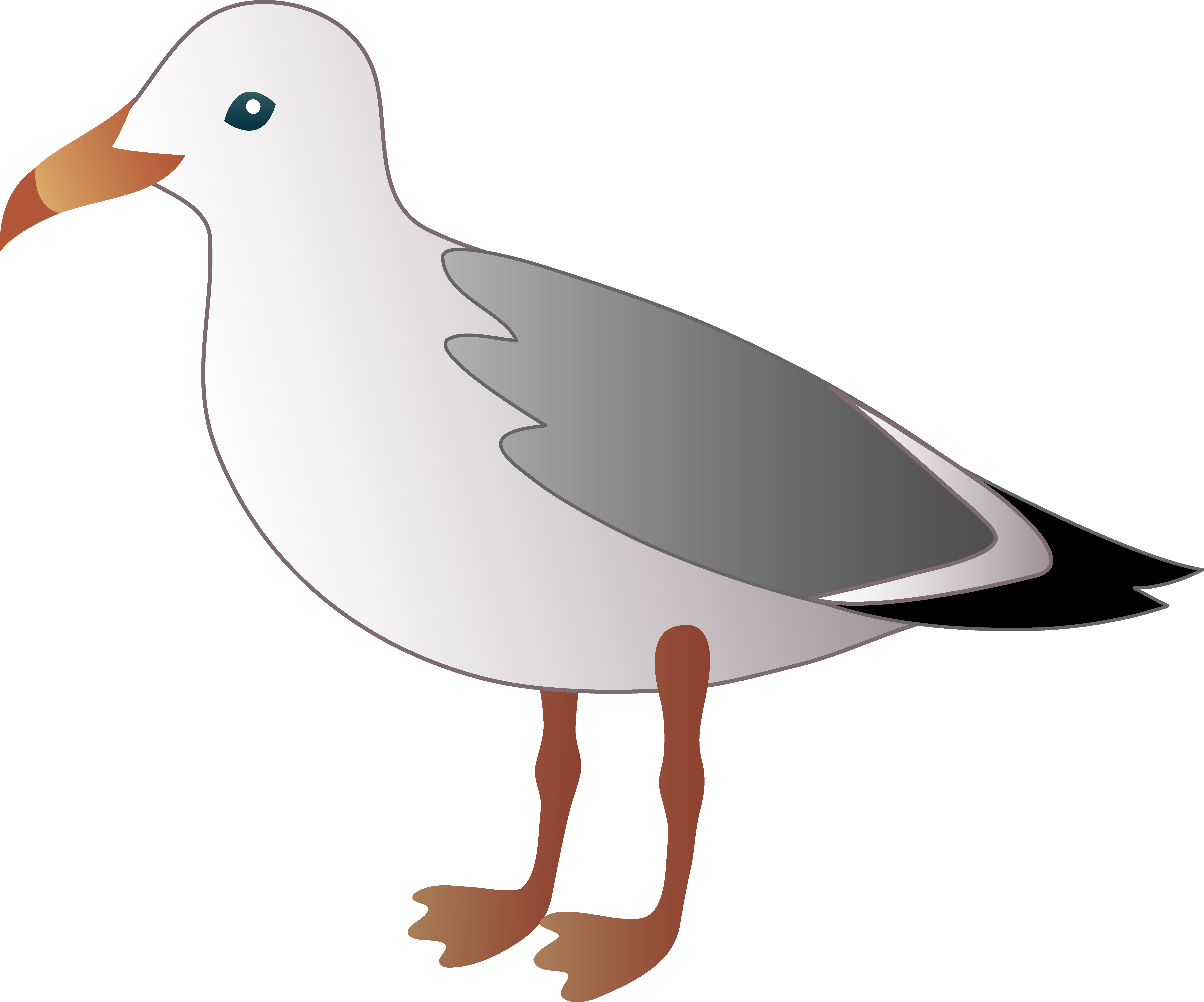 Flyijg Clip Art Beach Bird.