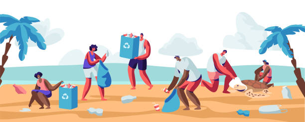 Best Beach Cleanup Illustrations, Royalty.