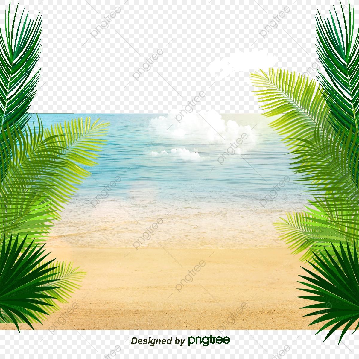 Great Beach Coconut Tree Decorative Background, Coconut Clipart.