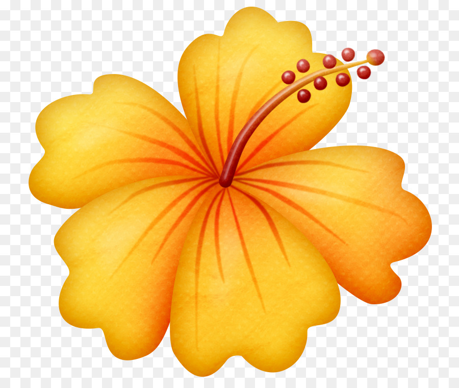 Hawaiian Flower clipart.