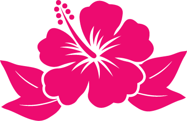 Hibiscus Flower Cartoon.