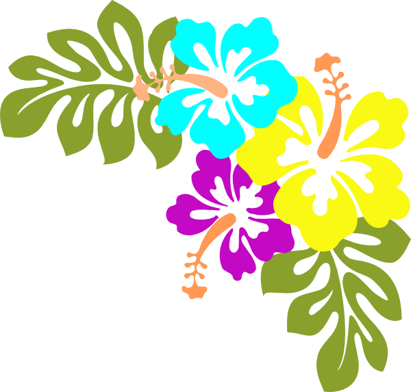 Hibiscus clipart beach, Hibiscus beach Transparent FREE for download.