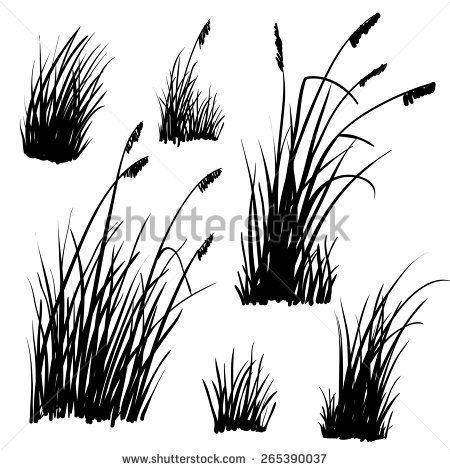 Set of hand drawn beach grass. Vector..