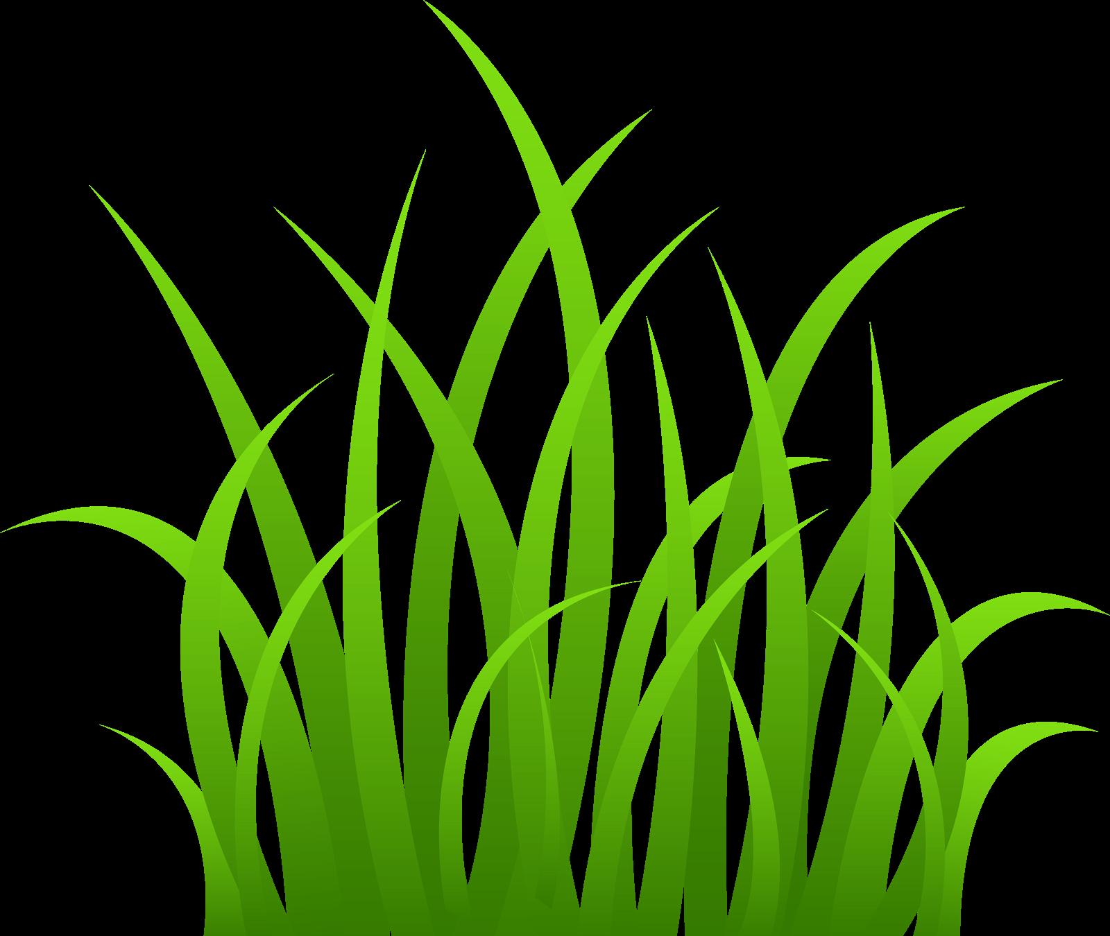 Grass plant clipart.