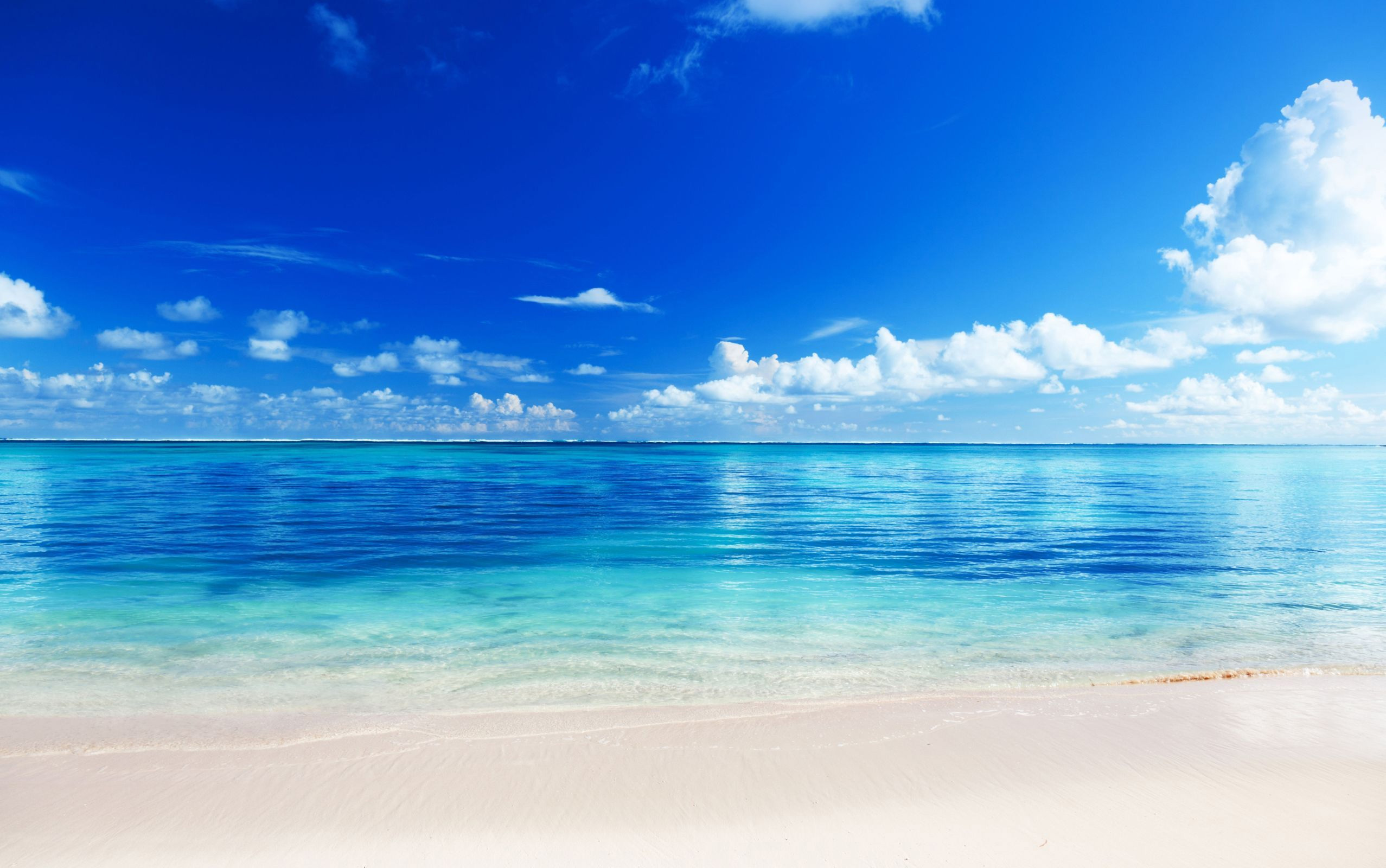 Beach PNG Transparent Beach.PNG Images. #173256.