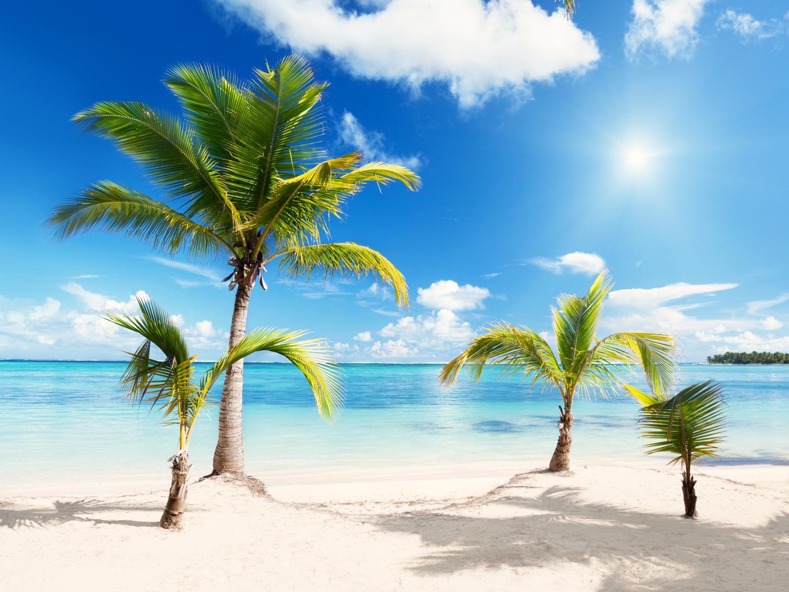 Beach PNG Transparent Images.