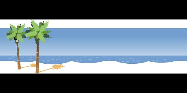 Palm, sea, beach png #41209.