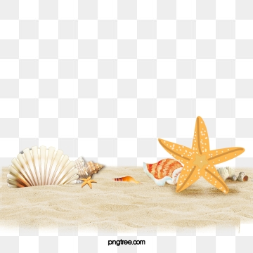 Beach Png, Vector, PSD, and Clipart With Transparent Background for.