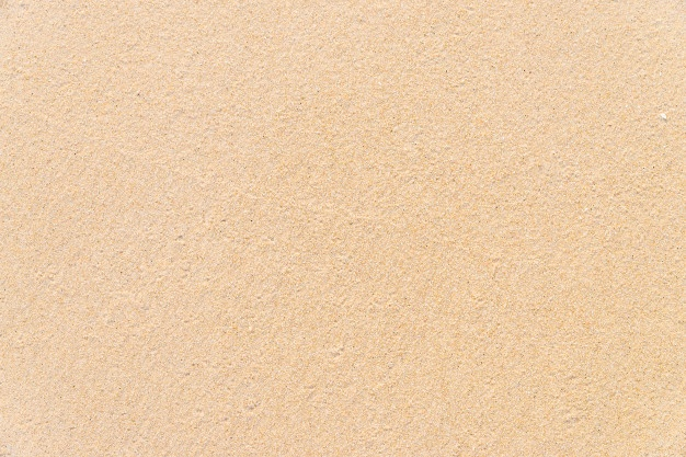 Sand Vectors, Photos and PSD files.