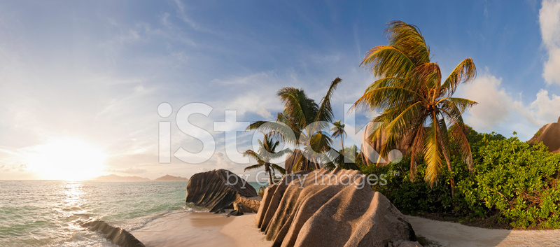 Palm Tree Sunset Idyllic Tropical Island Beach Panorama.
