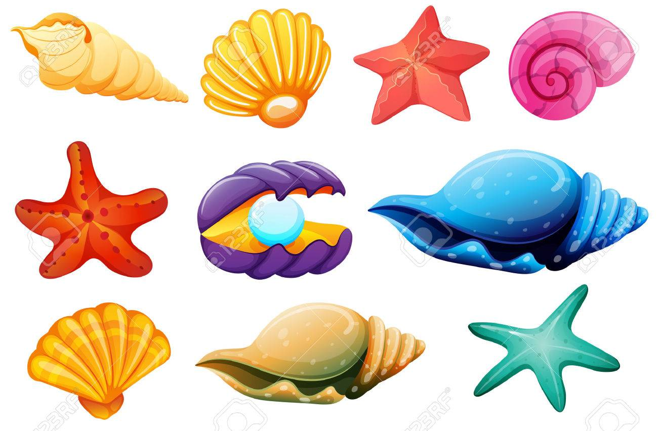 Clipart Sea Shells at GetDrawings.com.