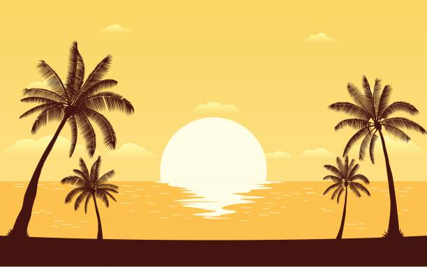 Best Beach Sunset Illustrations, Royalty.