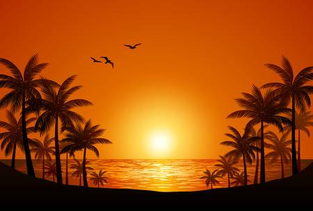 27,614 Beach Sunset Stock Illustrations, Cliparts And Royalty Free.