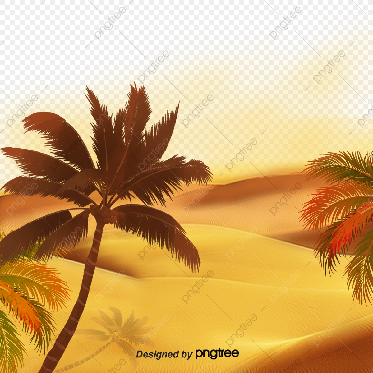 Vector Sunset Beach, Sunset Vector, Beach Vector, Sunset Clipart PNG.