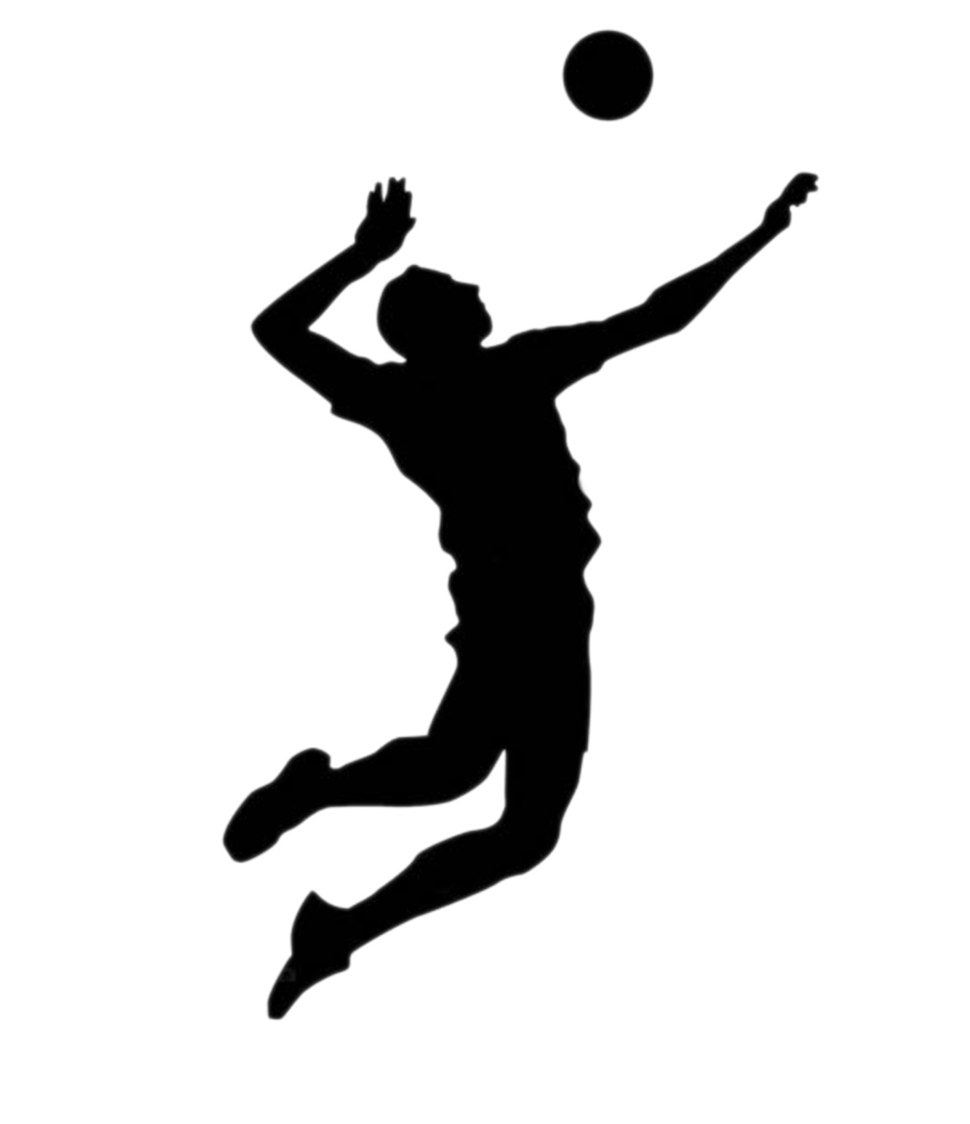 Asystel Volley Beach volleyball.