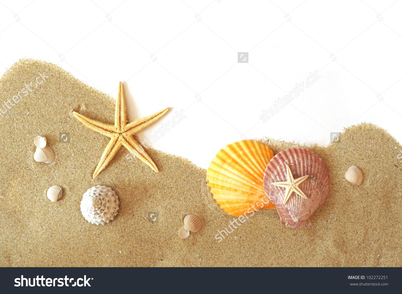 Beach Sand Shells Seastar Border On Stock Photo 102272251.