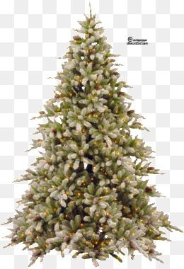 Christmas Tree, Tree Clipart, Tree PNG Image and Clipart for.