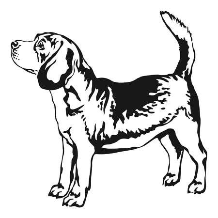 3,852 Beagle Stock Vector Illustration And Royalty Free Beagle Clipart.