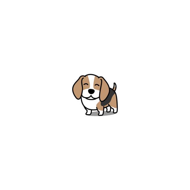 Best Happy Beagle Illustrations, Royalty.