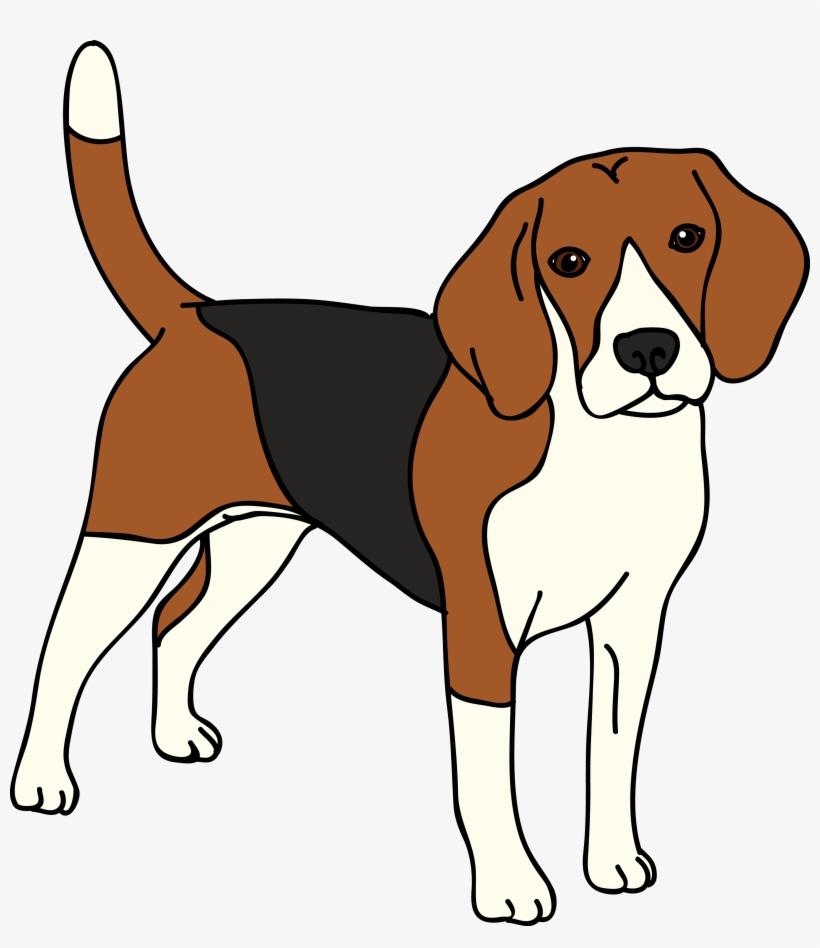 Beagle Vector Dog.