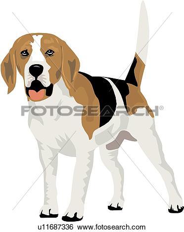 Clip Art of Beagle u11687336.