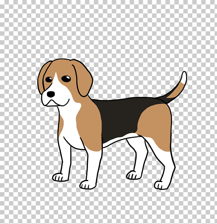 Beagle Harrier English Foxhound Puppy Dog breed, puppy PNG.