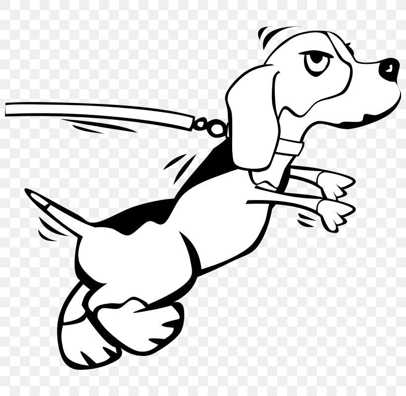 Beagle Puppy Leash Clip Art, PNG, 800x800px, Beagle, Area.