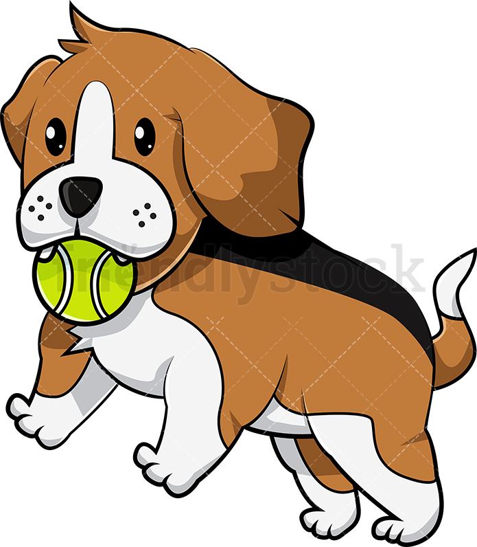 Beagle Puppy Playing With Tennis Ball.