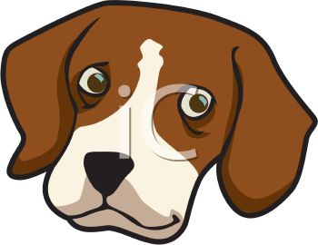 Picture of the Head of a Beagle In a Vector Clip Art Illustration.