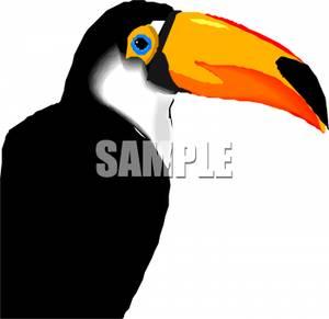 Beak Black And White Clipart.